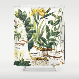 Floral  for Home Decor Shower Curtain