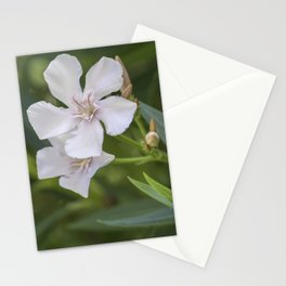 white oleander in the garden Stationery Cards