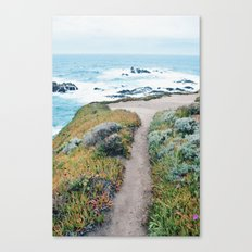 The Path to the Ocean Canvas Print