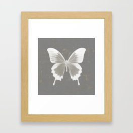 Butterfly on grunge surface Framed Art Print