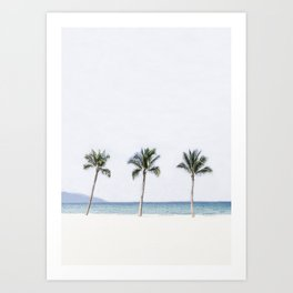 Palm trees 6 Art Print