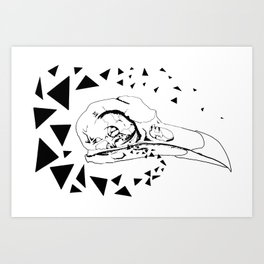 Youngbird Bird Skull Art Print