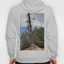 Pinkerton Mineral Springs, No. 3 of 4 Hoody