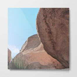 Joshua Tree - Sublime Metal Print