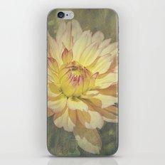 Unfolding Sun iPhone & iPod Skin