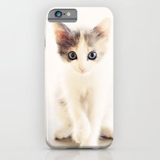 White and Grey Kitten iPhone 6s Slim Case