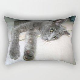 Russian Grey Cross Tabby Cat  Rectangular Pillow