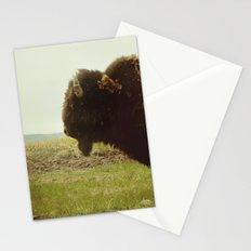 Stock-Still Stationery Cards