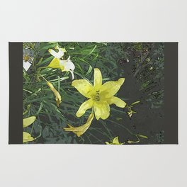 Yellow Lily DPGPA151014-14 Rug