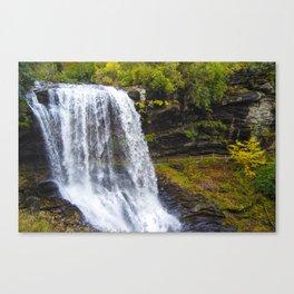 Dry Falls #2 Canvas Print