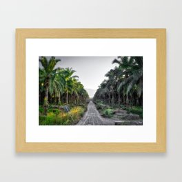 Palms Forever Framed Art Print