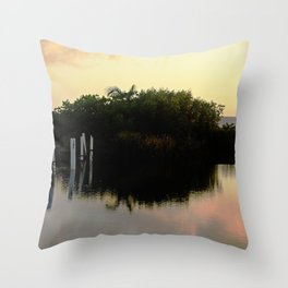 Beauty of Nature 3 @ Rincon Throw Pillow
