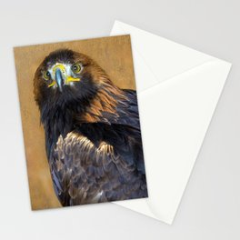 Scottish Golden Eagle Stationery Cards