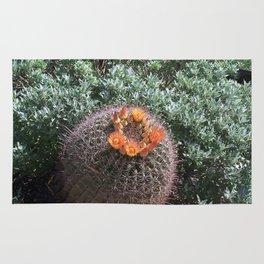 Barrel Cactus #2, Yellow Flowers Rug