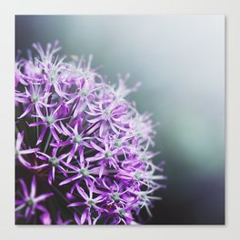 purple I Canvas Print