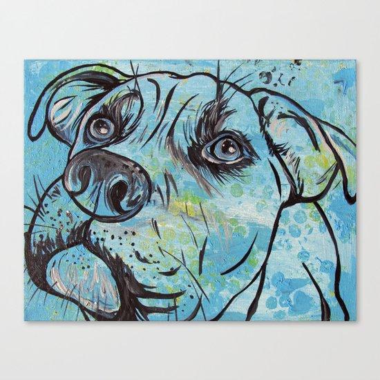 Blue Pit Bull Dog Canvas Print