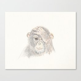Concerned Monkey Canvas Print
