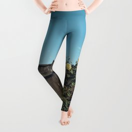 Yellow flowers over a wooden fence Leggings