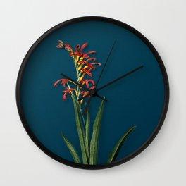Vintage Antholyza Aethiopica Botanical Illustration on Teal Wall Clock