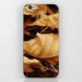 Crinkle leaves iPhone Skin