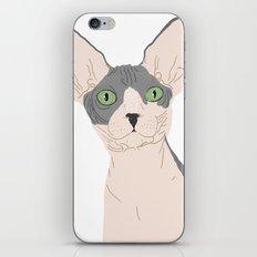 Nicolas iPhone & iPod Skin
