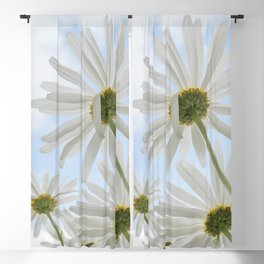 Remembrance Delicate White Daisies against Light Blue Cloudy Sky Blackout Curtain