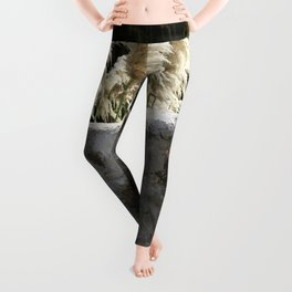 Flowering Pampas Grass Plumes Leggings