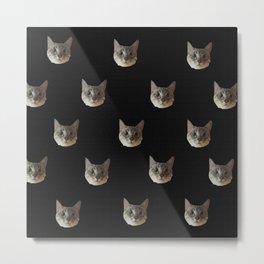 c-cat Metal Print