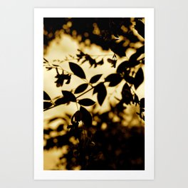 Silhouette I Art Print
