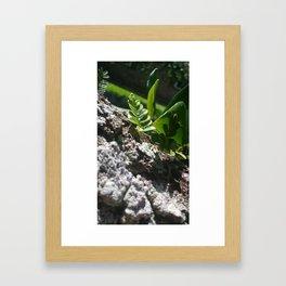 Shine Down, Green Framed Art Print