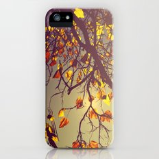 One Fine Day  Slim Case iPhone (5, 5s)