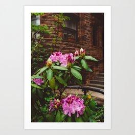 Brooklyn Heights Blooms Art Print