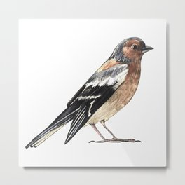 Watercolor nightingale Metal Print