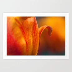 Tulip Bends Art Print
