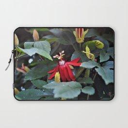 Lady Margaret Passion Flower Laptop Sleeve