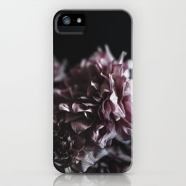 Dahlia in the Dark iPhone Case