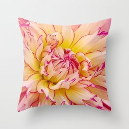 Pink Dahlia with Bright Pink tips Close Up Detail Throw Pillow