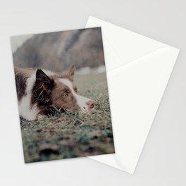 Kiva the dog Stationery Cards