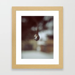 Delicate. Framed Art Print