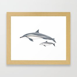 Long-beaked dolphin and baby Framed Art Print