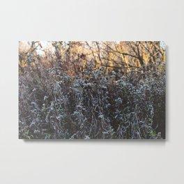 Housatonic Flats XVIII Metal Print