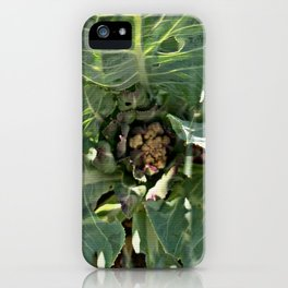 Cauliflower is the New Cool iPhone Case