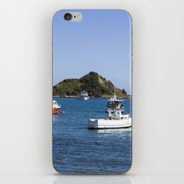 Island Bay Beach iPhone Skin