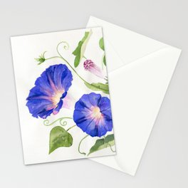 Morning Glory Bloom Stationery Cards