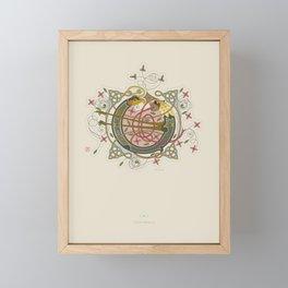 Celtic Initial O Framed Mini Art Print