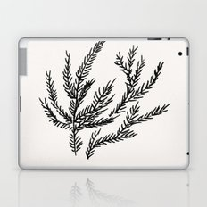 Summer Coral Fern Laptop & iPad Skin