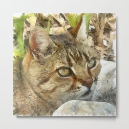 Relaxed Tabby Cat Resting In Garden Metal Print