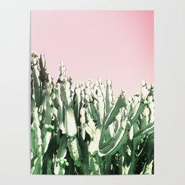 Cactus Cactus Poster