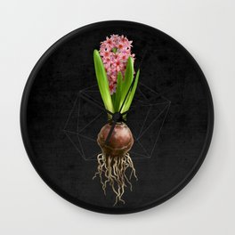 Pink Hyacinth Hydroponics (tryptic 3/3) Wall Clock