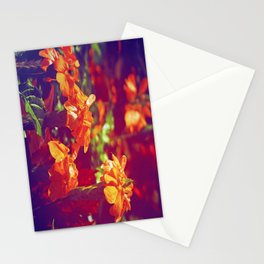 Sun Kissed Maroon Stationery Cards